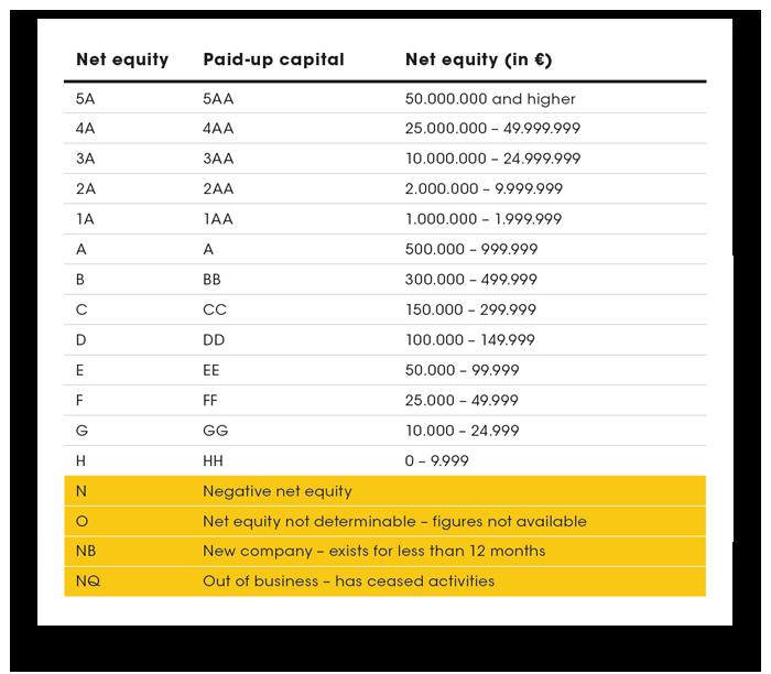 D&B Rating Elements